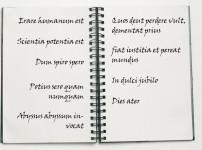 """Erklärung der lateinische Zitate aus """"Das Geheimnis des Komponisten"""""""