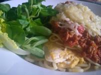Schnitzel Milanese – Paniertes Schnitzel mit Spaghetti Bolognese