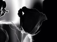 Der richtige Umgang mit Trauer, Verlust und Wut