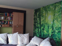 Posters.de: Hol dir den Dschungel in dein Wohnzimmer! {Sponsored}