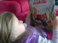 Kleiner Panda Pai – unterwegs ins Abenteuer ab 3 Jahren