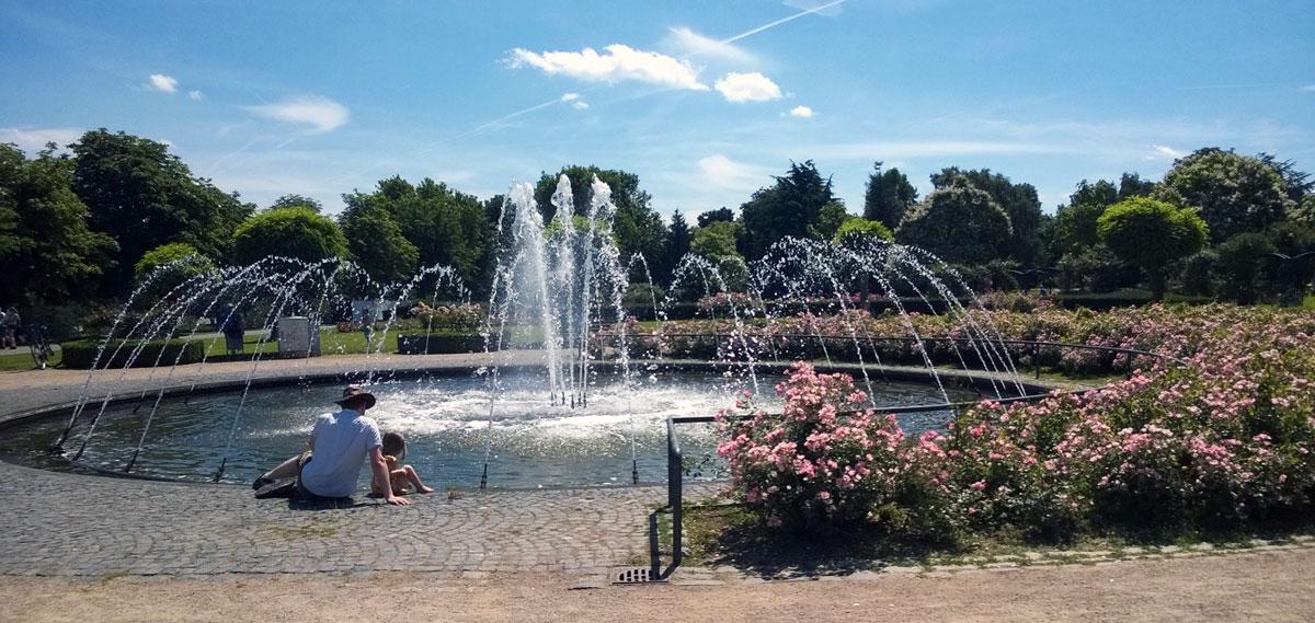 Ausflug Rheinaue