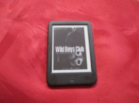 """Wild Boys Club-Mister Temptation"" von Lily Wilde {Rezension}"