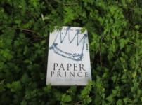 """""""Paper Prince"""" hat mich durchgehend gefesselt !!"""
