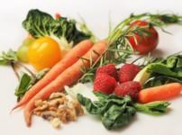 """Aktionsbeitrag zum Werk """"Veganermord"""": Beweggründe für eine vegane Ernährung"""