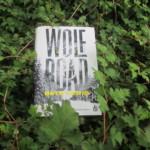 """Blogtour """"Wolf Road"""" Tag1- Vorstellung des Buchs"""